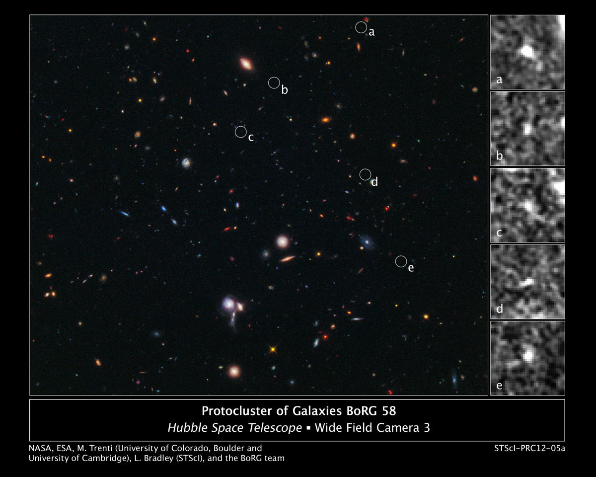Hubble Spies Building Blocks of Most Distant Galaxy Cluster