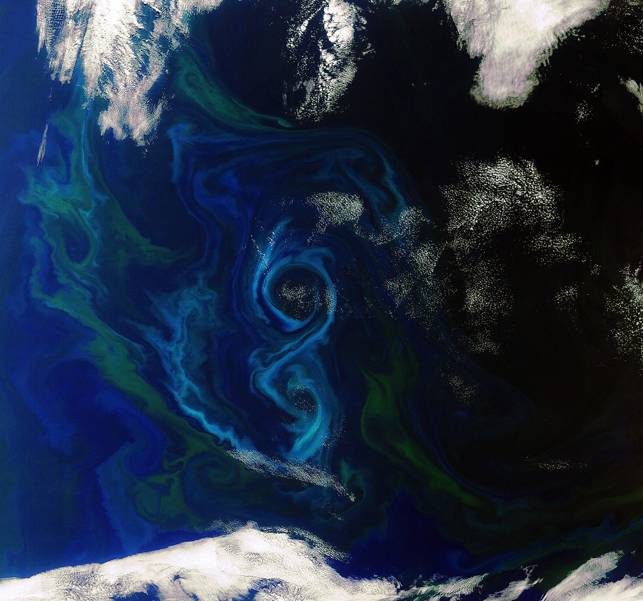 Ocean's 8: Satellite Snaps Stunning Photo of Algae Bloom