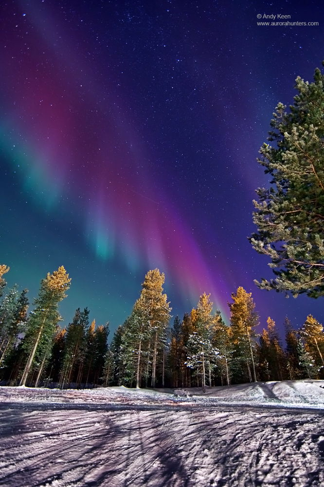 Aurora over Ivalo, Northern Lapland, Finland