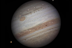 Jupiter Seen by Damian Peach