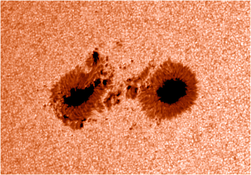 Observant Sunspots