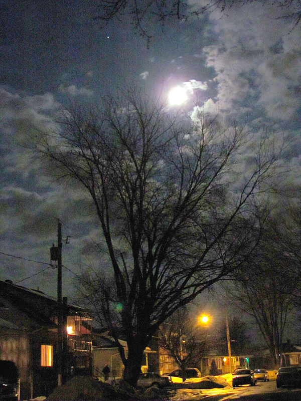 The Moon and Mars with Tree in L'Assomption, Québec, Canada