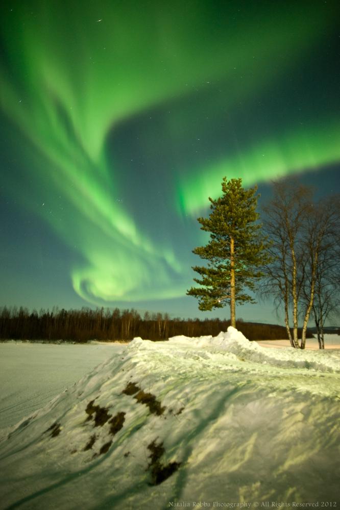 Aurora over Ivalo, Finland #2