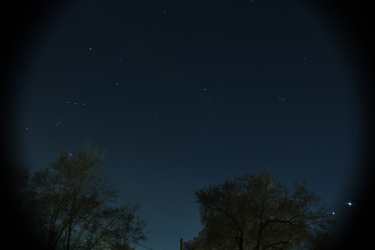 Jupiter, Venus and Orion over Michigan