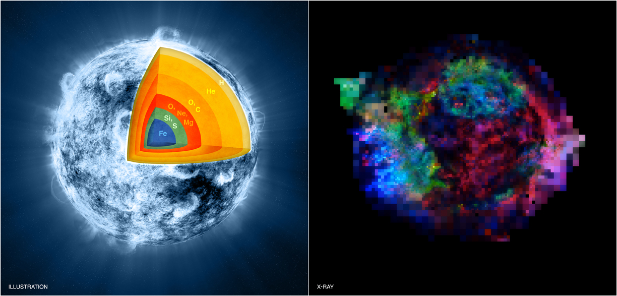 Supernova Explosion Ripped Star's Guts Inside Out