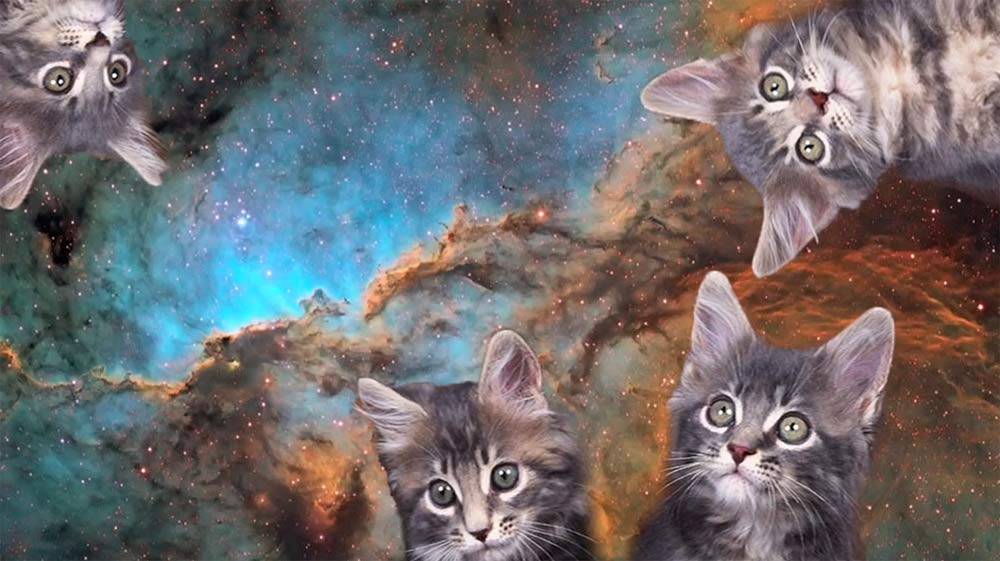 Cats in Space: Internet Video Pokes Feline Fun at Cosmic Photos