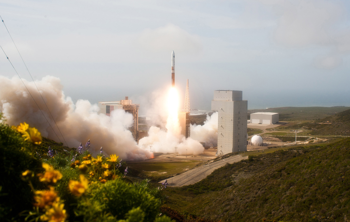 NROL-25 Satellite Liftoff with Foreground Flowers