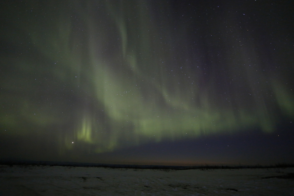 Alaska's Aurora Blazes Above the Snow