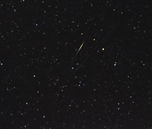 Lyrid Meteor Shower 2012: Marian Murdoch
