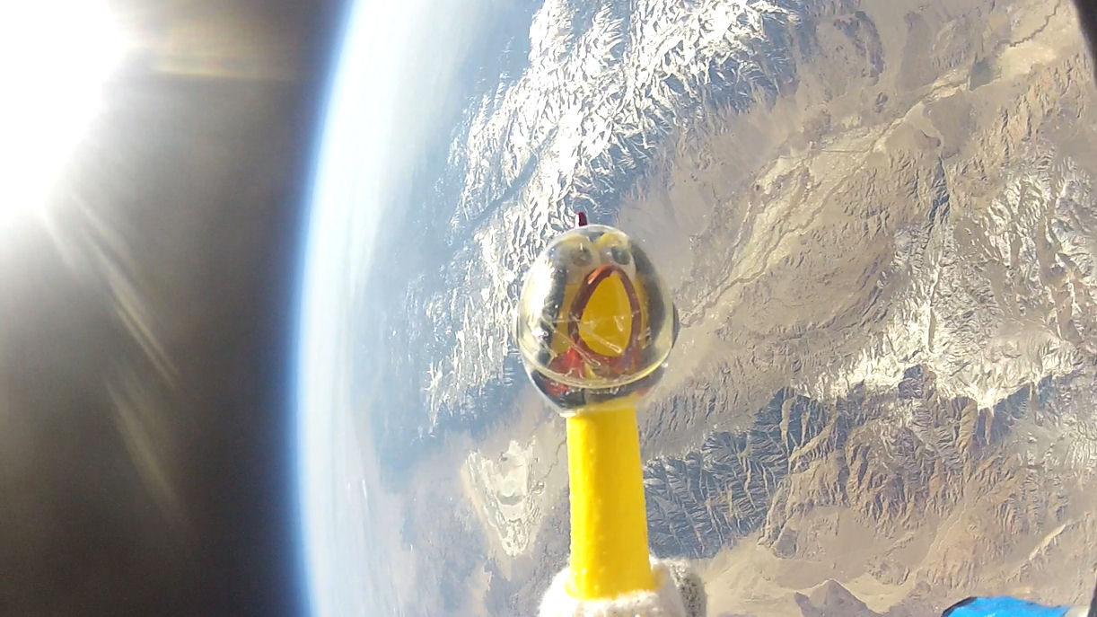 Rubber Chicken Survives High-Flying Trip Through Solar Storm