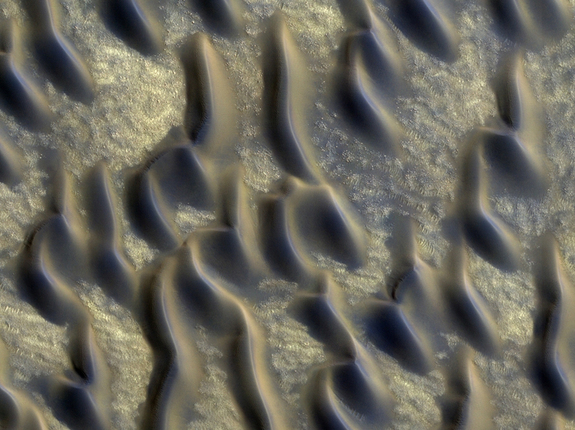 Dusty, glass-rich sand dunes like these found just south of the north polar ice cap could cover much of Mars. (False color image)