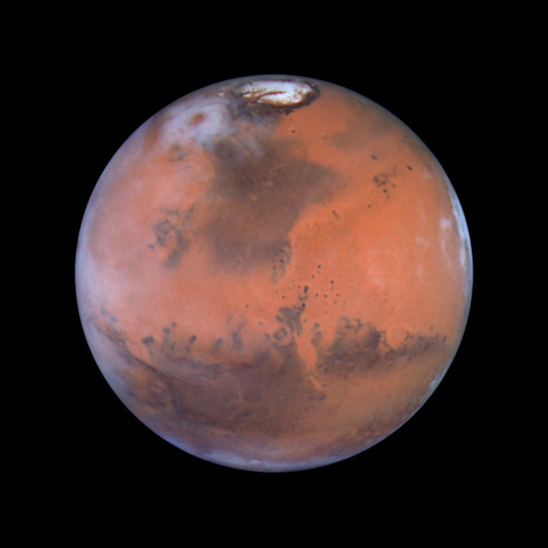 Meteorite Reveals Clues in Search for Life on Mars