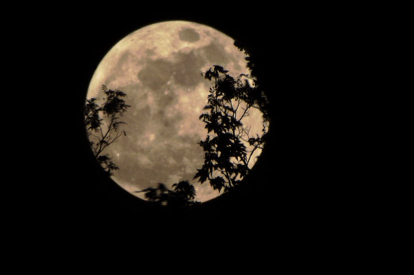 Why the 'Supermoon' Will Look Largest Near the Horizon