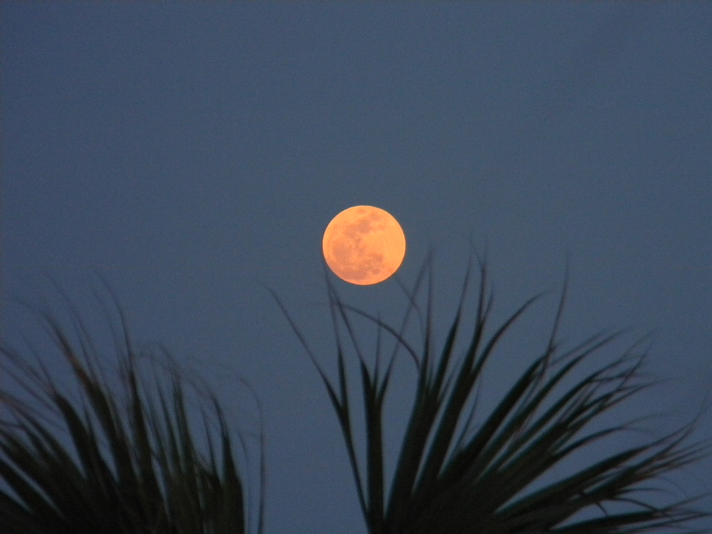 Supermoon 2012 Over Florida: Dion Paul