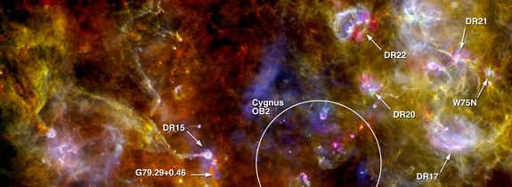 An annotated picture of the region Cygnus-X, highlighting numerous dense sites of new star formation in the right-hand complex, and the swan-like structure in the left-hand portion of the scene. The image was taken by the European Space Agency's Herschel space telescope.