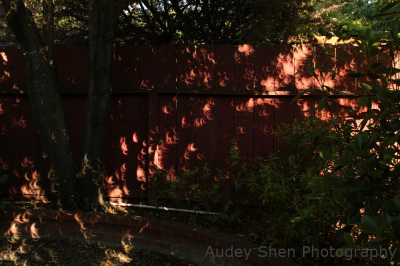 Solar Eclipse of 5/20/2012: Partial Eclipse Shadows