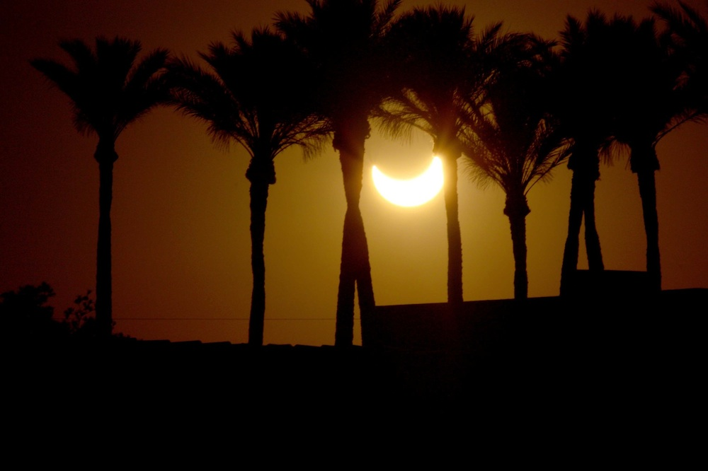 Eclipse Among the Palms