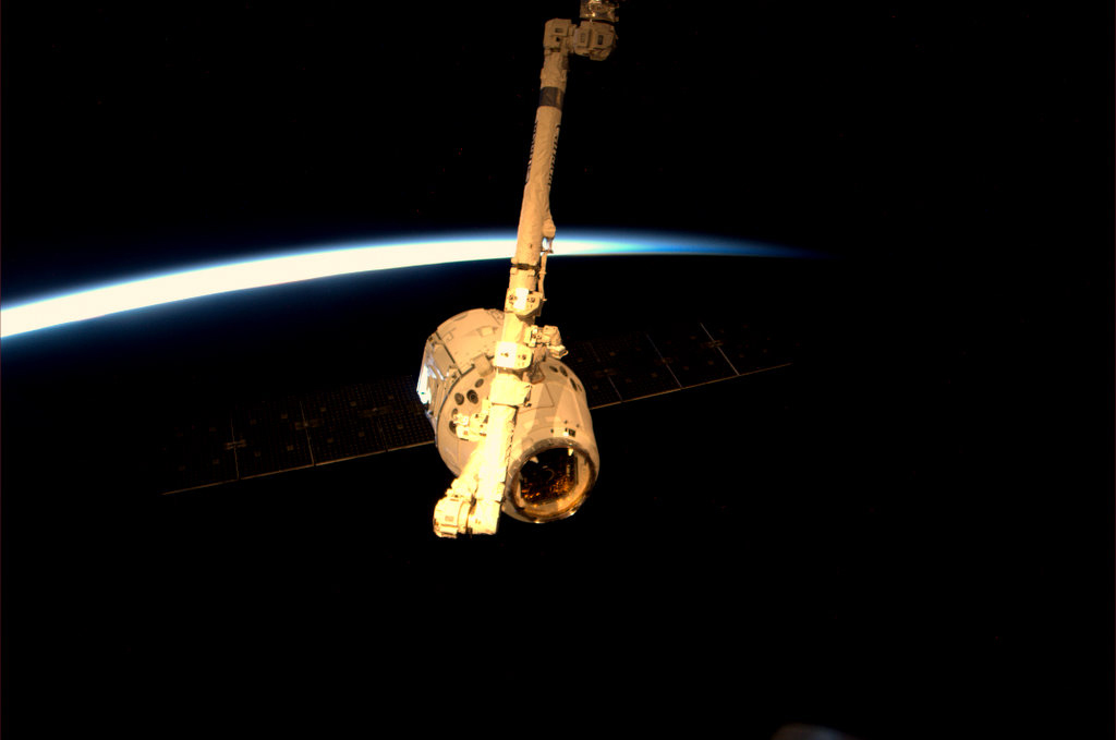 Dragon Grappled Against the Earth's Limb