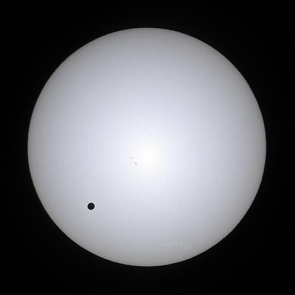 Venus Transit 2004 in White Light