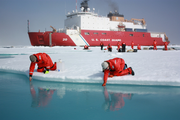On July 10, 2011, Jens Ehn of Scripps Institution of Oceanography (left), and Christie Wood of Clark University (right), scooped water from melt ponds on sea ice in the Chukchi Sea during the NASA-sponsored ICESCAPE expedition.