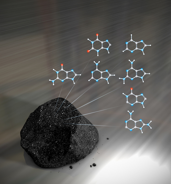 Meteorites have been found to contain a variety of the essential building blocks of DNA.