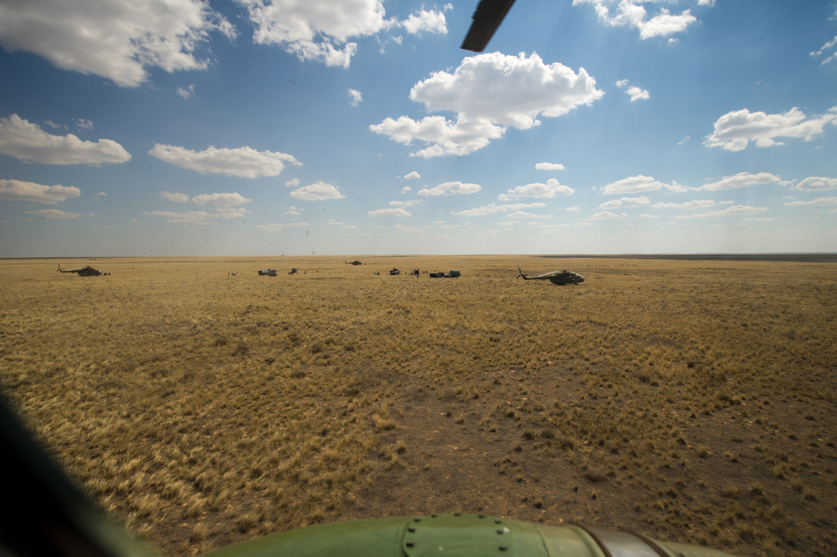 Steppe-ing Out