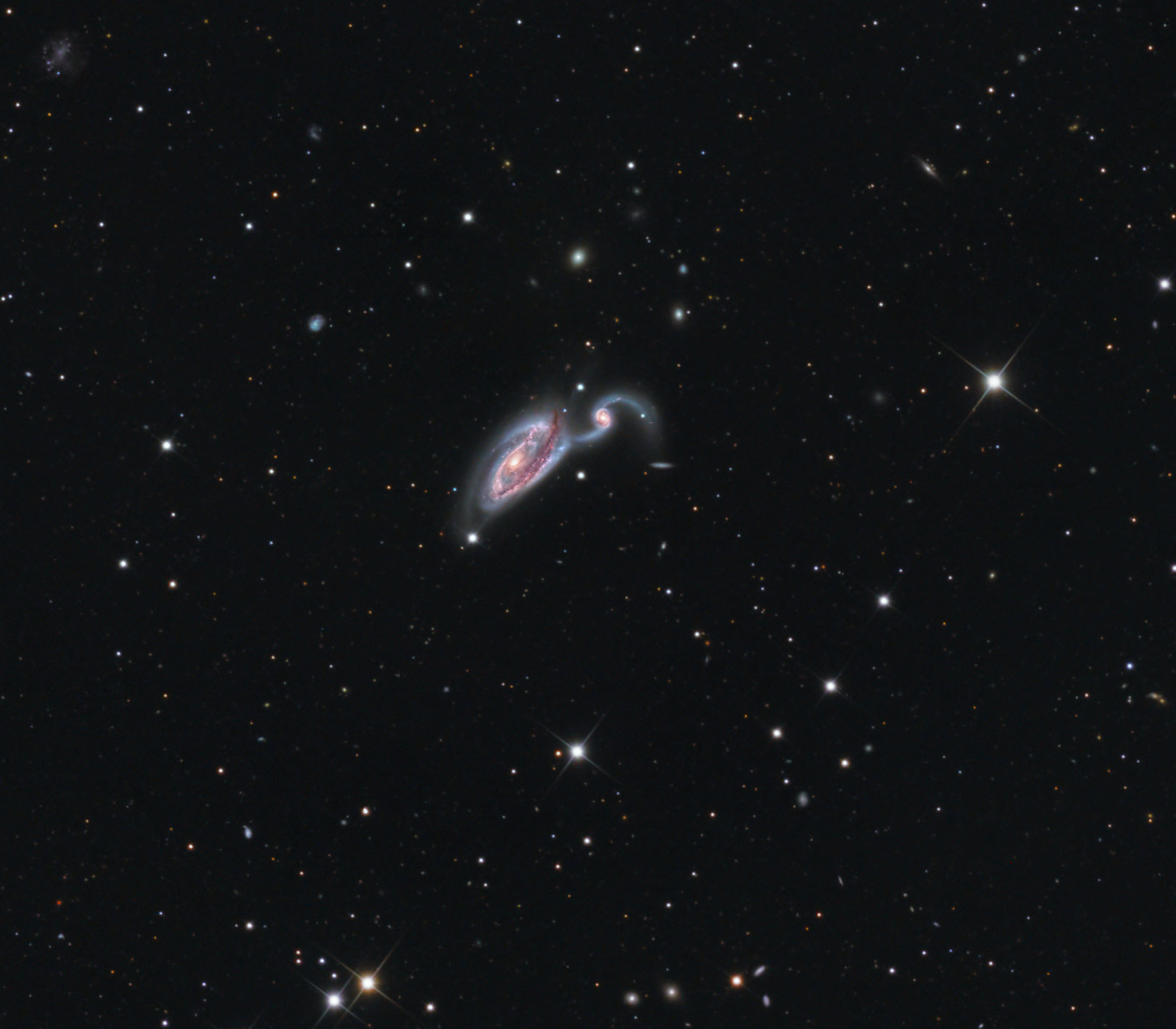 Heron Galaxy Spears Deep Space 'Fish' in Night Sky Photo