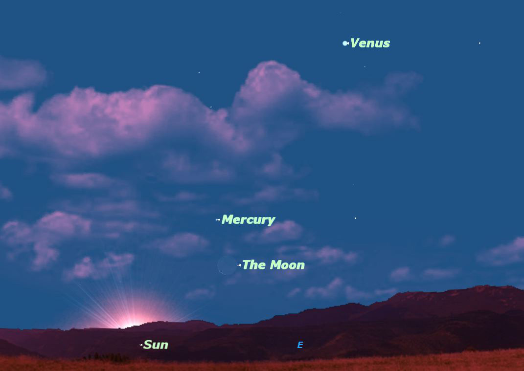Mercury and Venus at Maximum Elongation