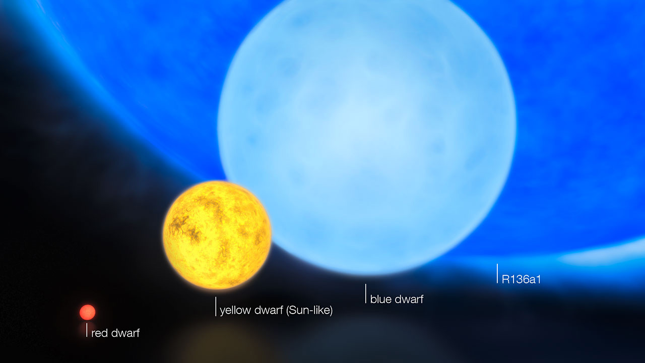 Relative Sizes of Young Stars
