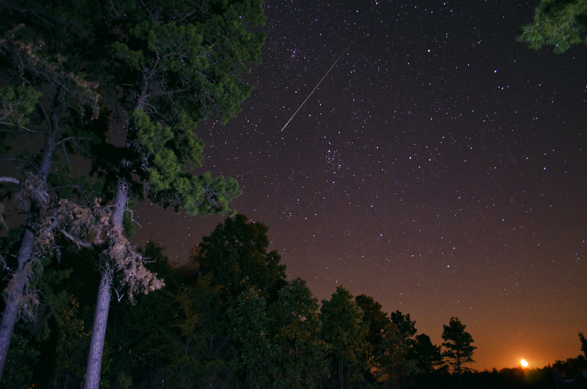 Perseid Meteor Shower 2012: Jeff Rose