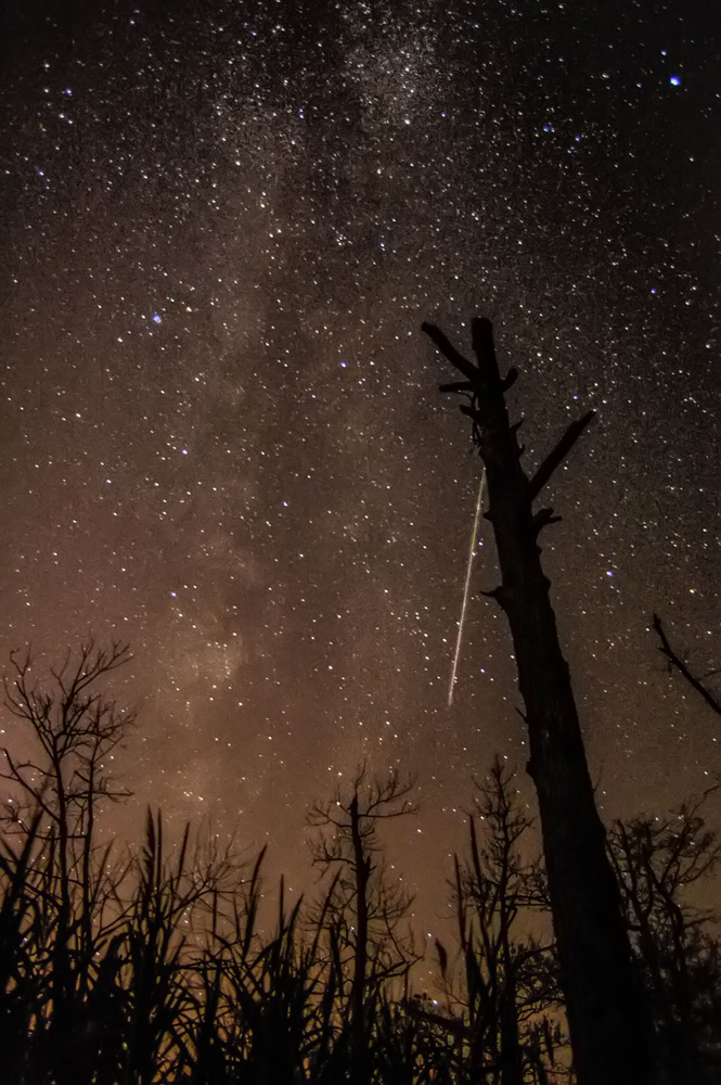 Perseid Meteor Shower 2012: Chris Bakley
