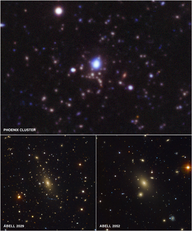 Phoenix Cluster and Abell 2029 and Abell 2052