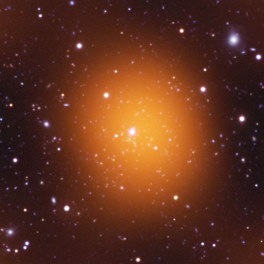 Record-Breaking Phoenix Galaxy Cluster: By the Numbers
