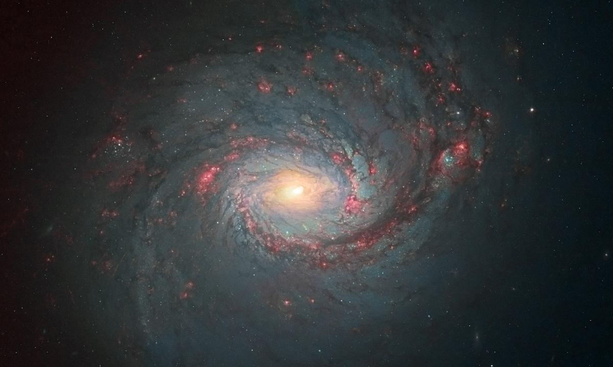 Second Prize: Andre van der Hoeven, Spiral Galaxy Messier 77