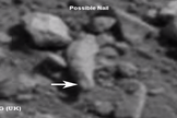 """Possible ancient finger"" spotted in Curiosity photos."