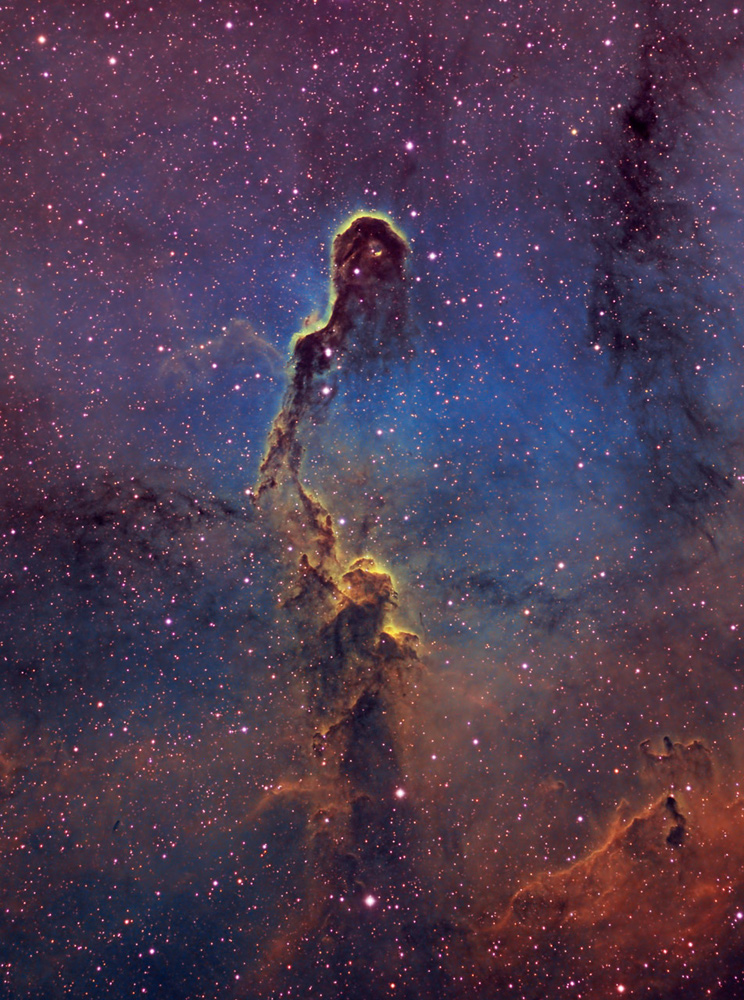 IC 1396 – Elephant-Trunk Nebula by Bill Snyder