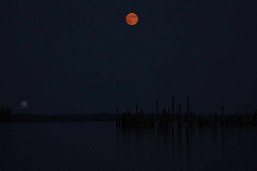 Blue Moon Over North Carolina