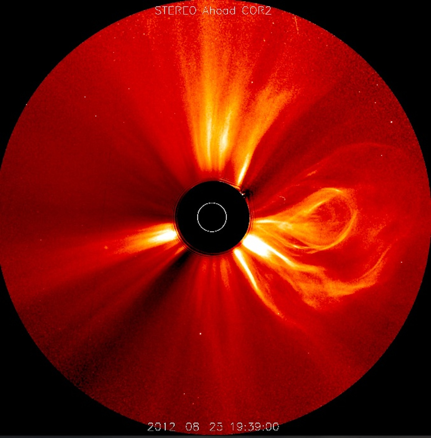 Giant Solar Flare and Prominence: STEREO
