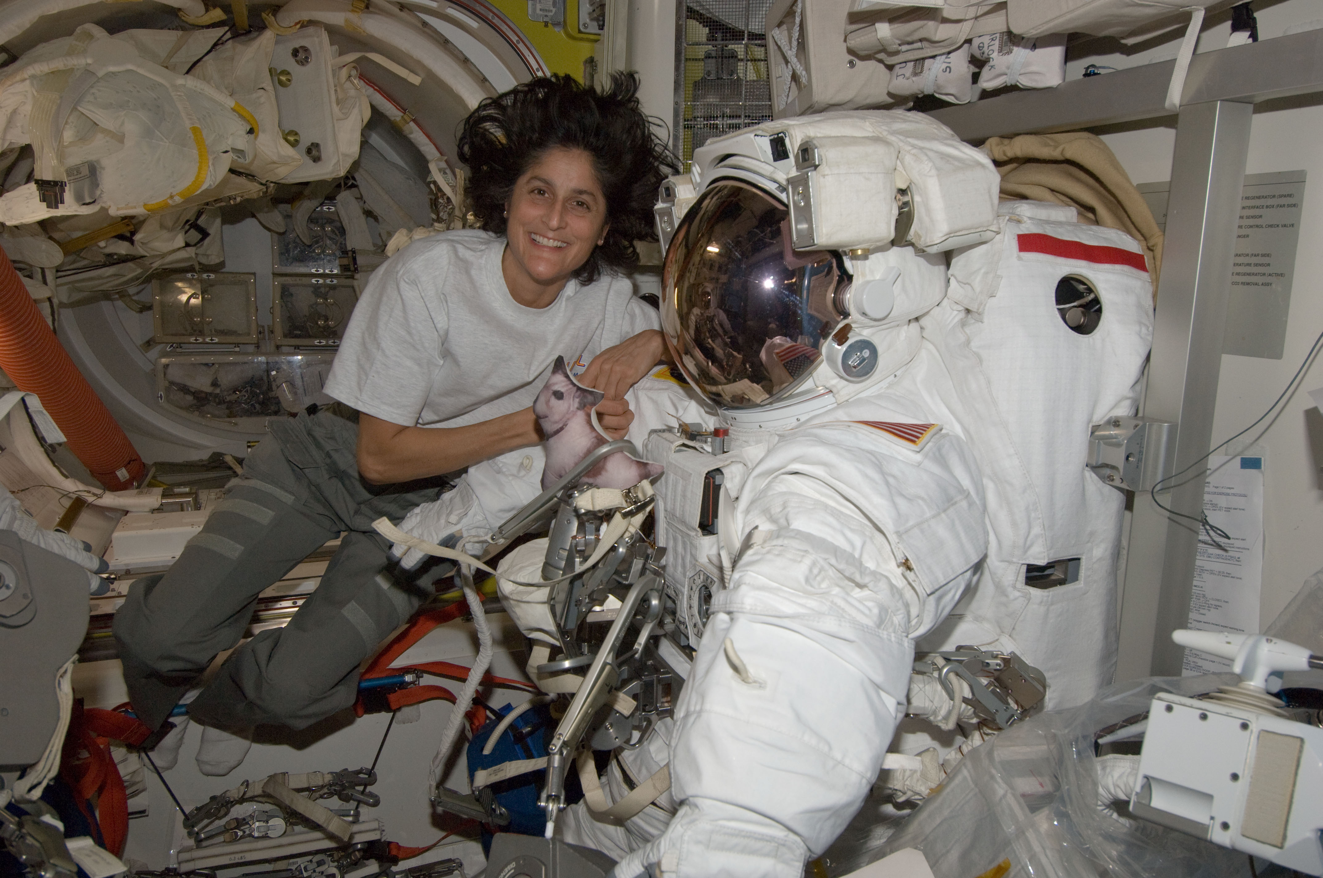 sunita williams in space station - photo #10