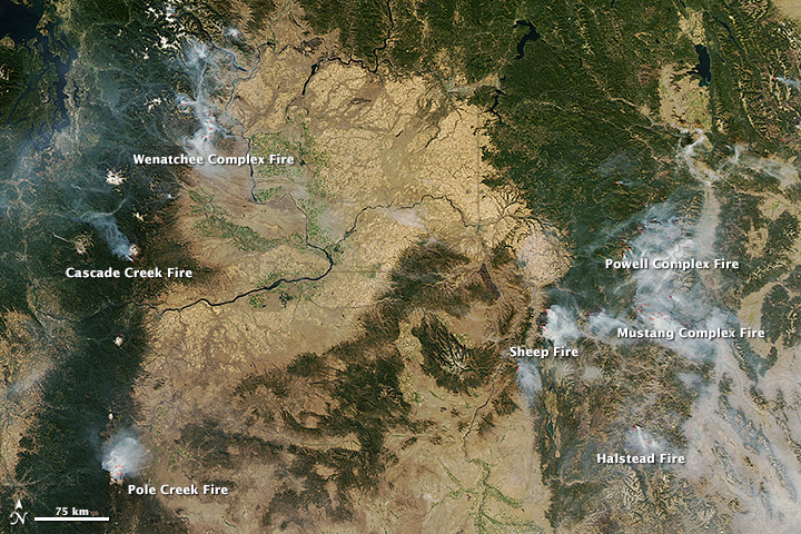 Northwestern Wildfires Spotted from Space