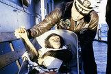 Ham the chimpanzee after his successful suborbital spaceflight of Jan. 31, 1961.