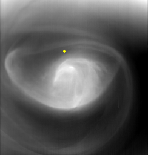 Venus's Polar Vortex