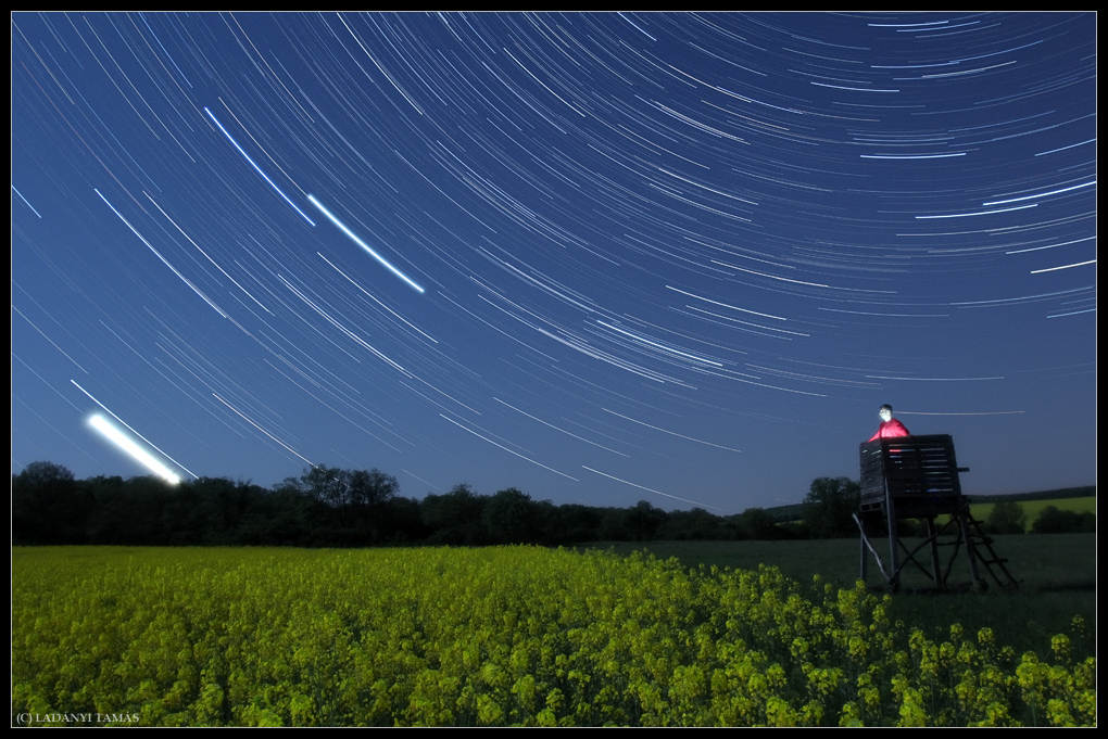 'Supermoon' and Star Trails Shine On Flower Fields (Photo)