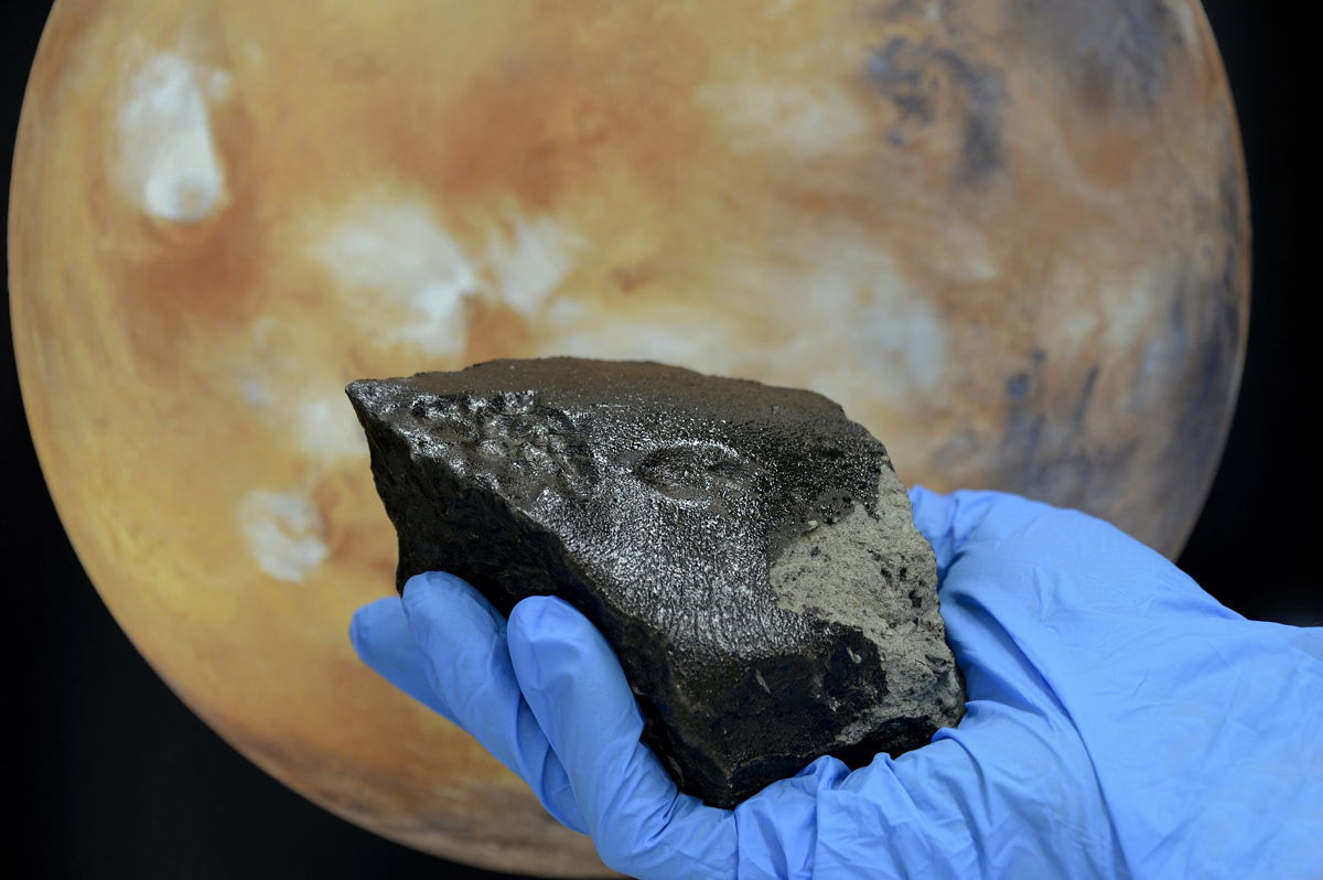 One of the Largest Tissint Meteorites