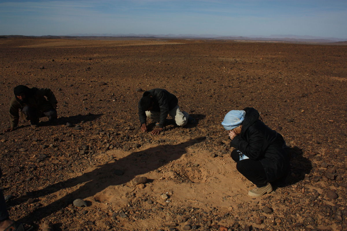 Research at the Tissint Meteorite Fall Location