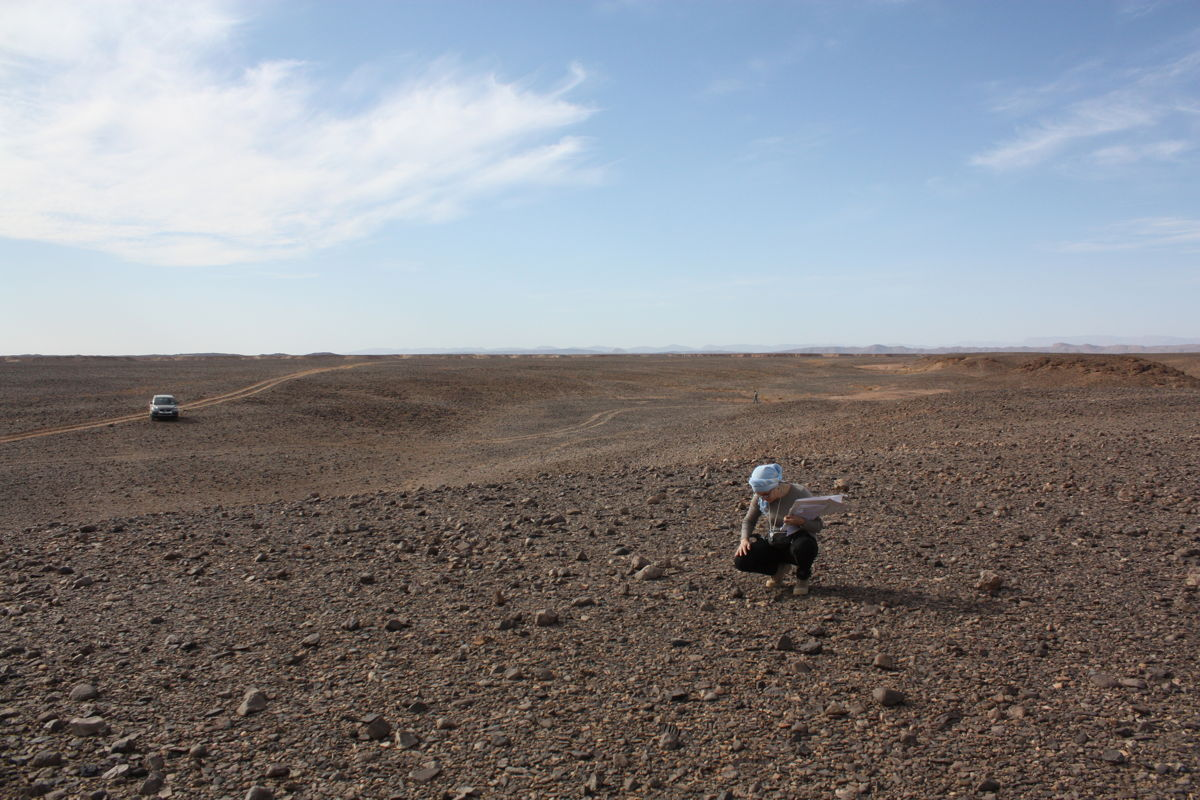 Research at the Location of the Tissint Meteorite Fall
