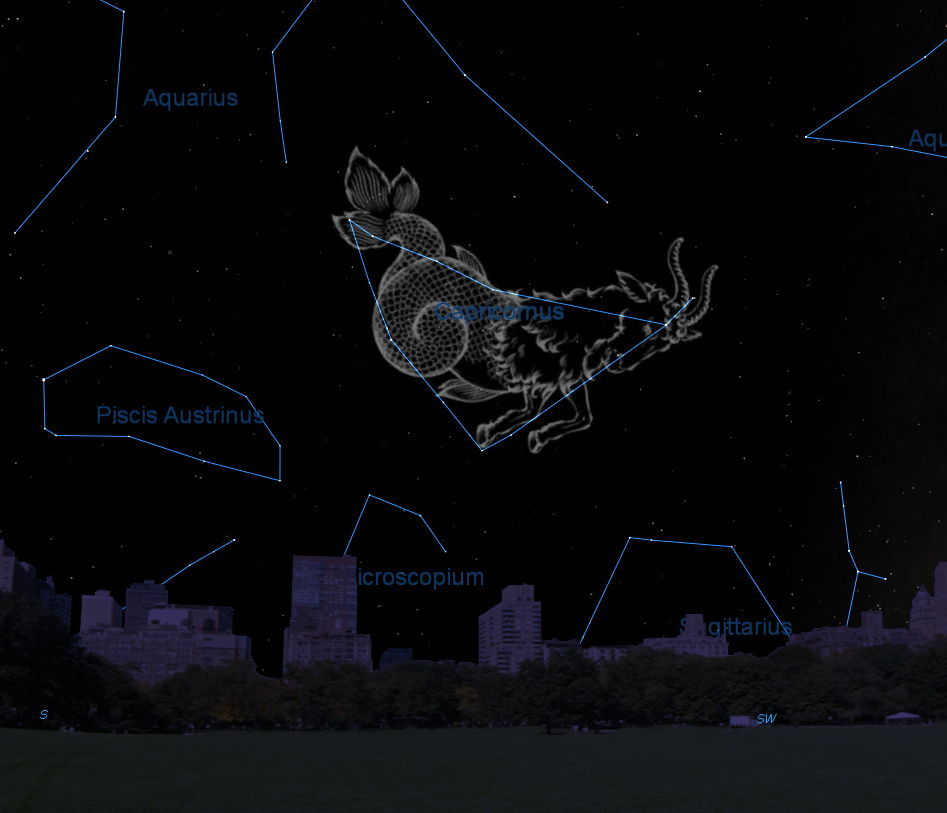 Capricornus Constellation: Facts About the Sea Goat