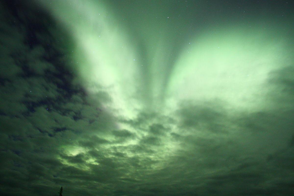 Aurora Angel Over Manitoba