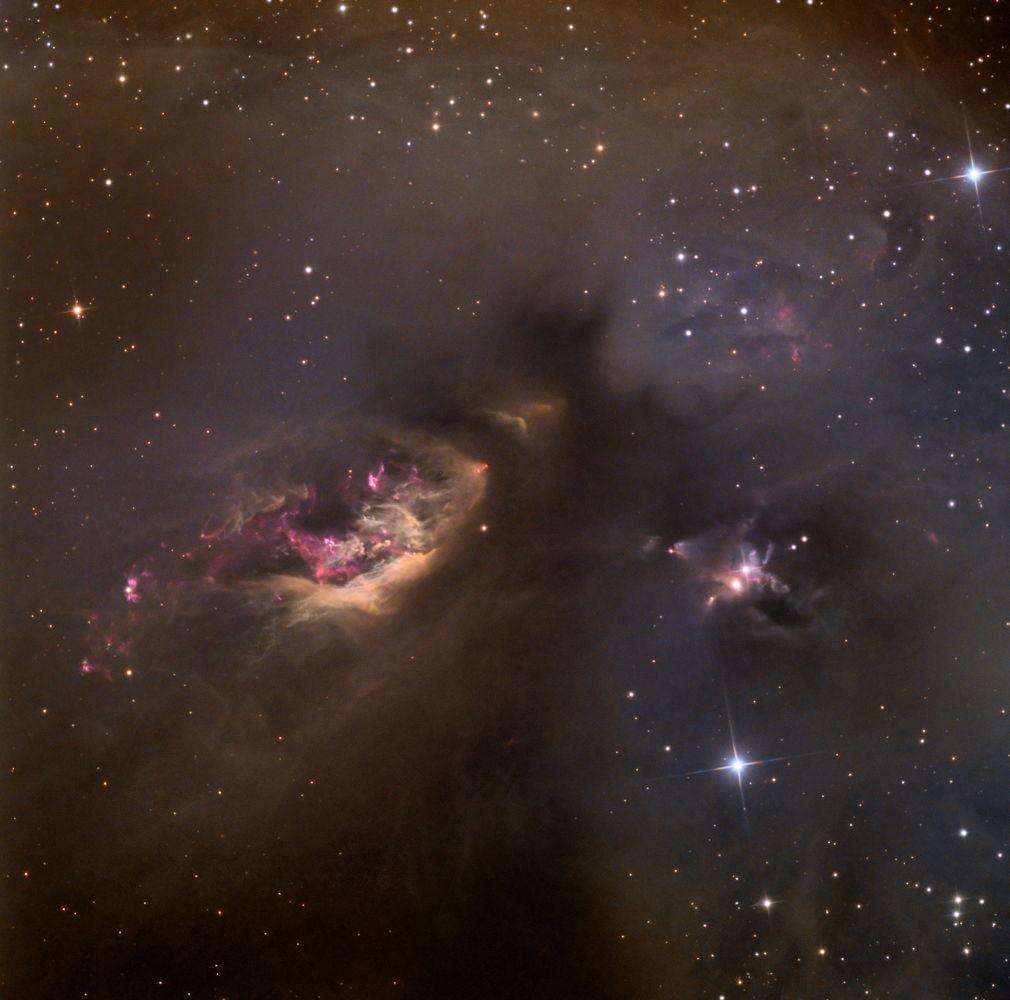 Nebula SH2-239