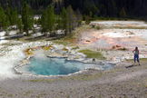 Octopus Spring in Yellowstone National Park is home to microbial mats that have a distinctive color.